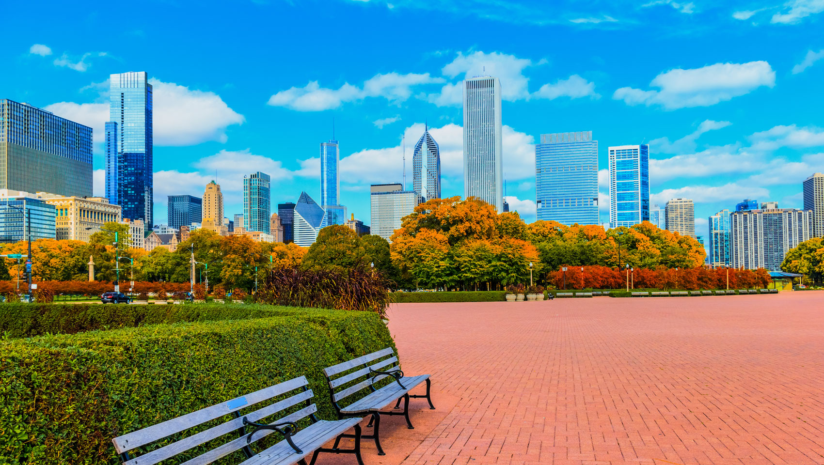 Chicago skyline with fall foliage