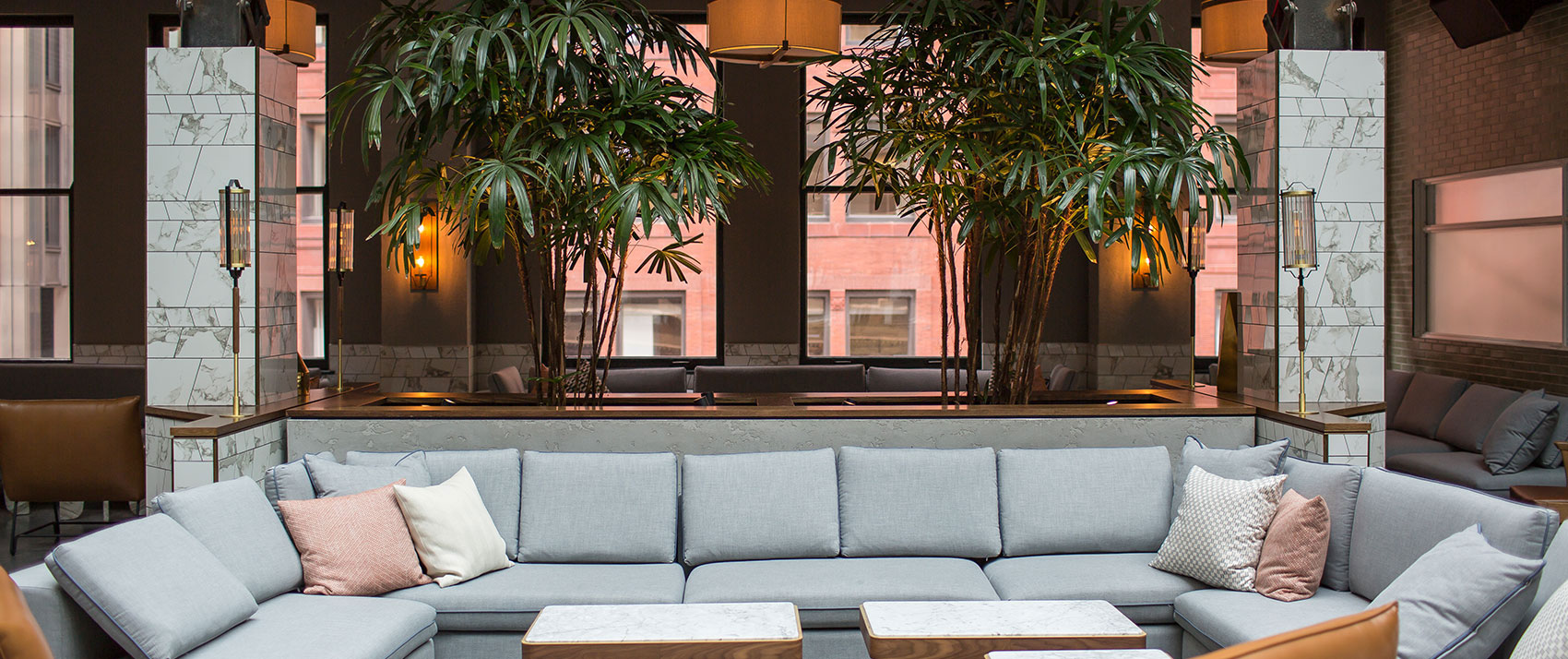 plant,light fixture,pattern, Couch, Rooftop